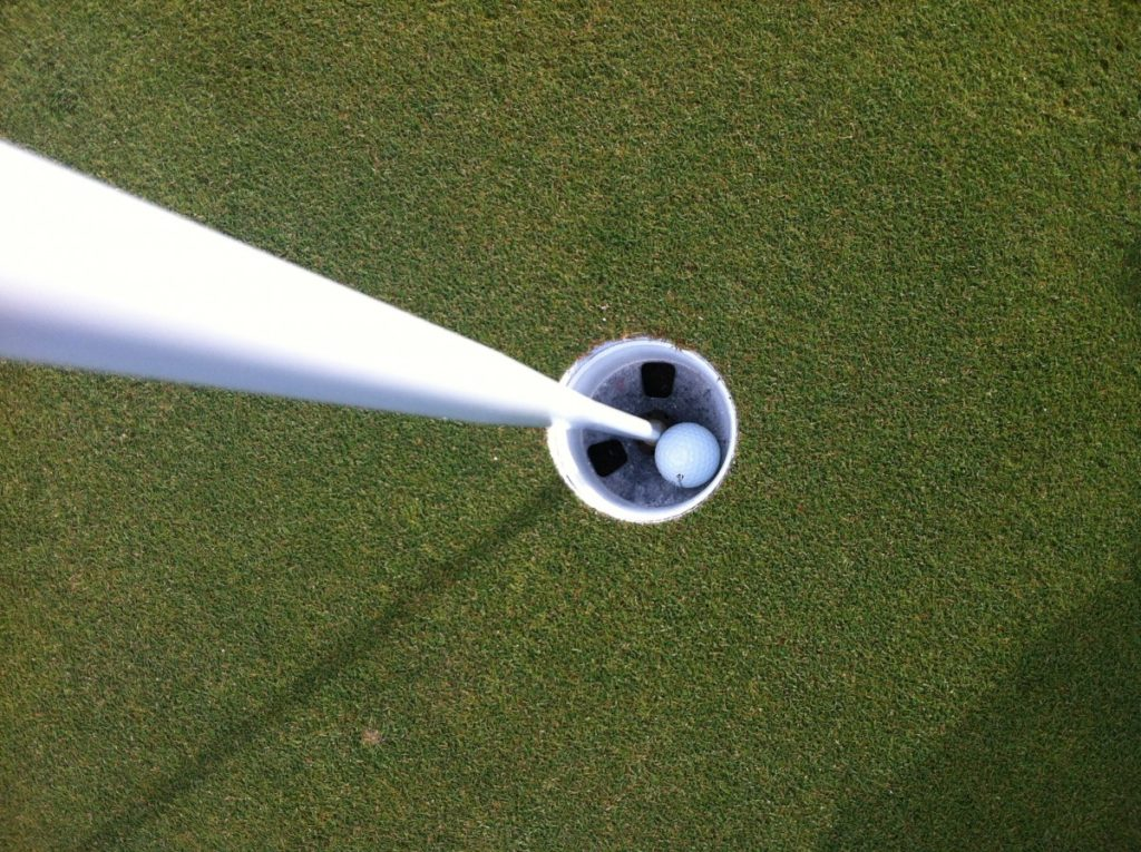 golf_ball_in_hole_hole_in_one_ball_hole_green-658132
